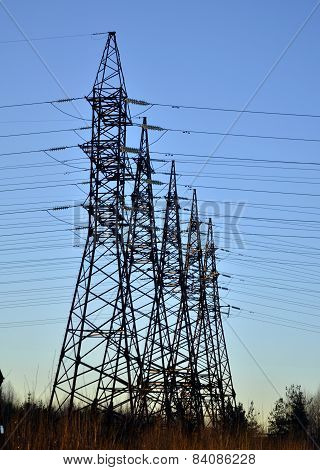 Poles of power lines against