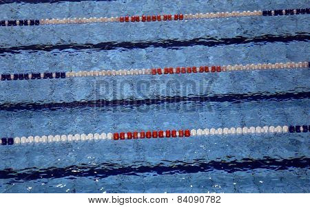 Swimming Pool With Lanes For Swimming Competitions