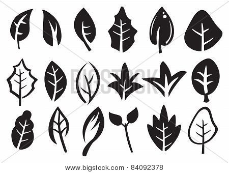 Leaf Vector Icon Set