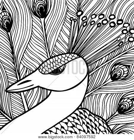 Decorative ornamental peacock. Doolle style