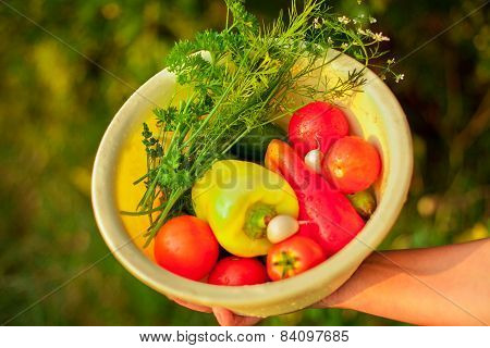 Woman Holding A Basket Filled With Vegetables