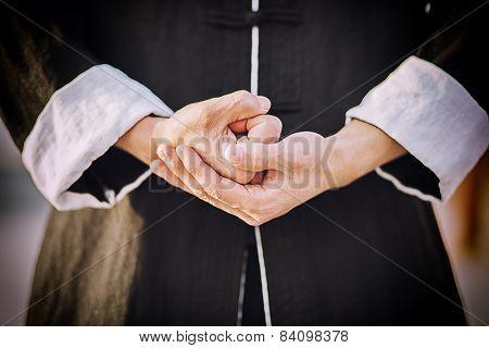 Tai chi master's hands