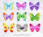 stock photo of summer insects  - Set of watercolor butterflies of different colors and shapes drawn by hand on a background of a crumpled paper - JPG