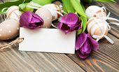 picture of easter flowers  - easter background with easter eggs ribbon and flowers - JPG