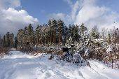 stock photo of dirt-bike  - bike off the trail buried in snow in winter scenery - JPG