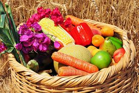 foto of israel people  - Basket of the first fruits during the Jewish holiday Shavuot in Israel - JPG