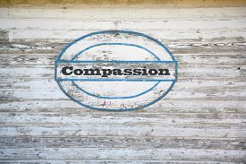 picture of sympathy  - Compassion Concept  - JPG