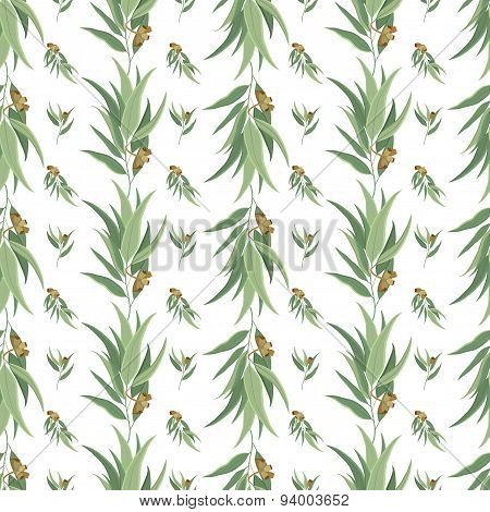 Elegant vector seamless pattern with eucalyptus leaves and seeds