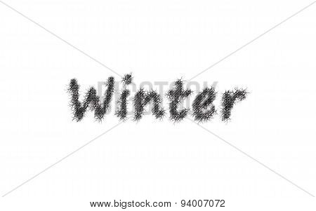 Winter Text With White Background