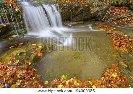 Creek in Irati Jungle, Pyrenees, Navarre, Spain.