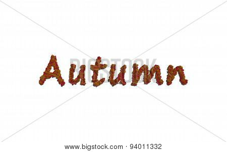 Autumn Tree Text With White Background