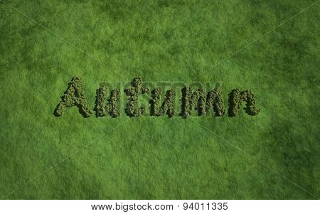 Autumn Text Tree With Grass Background