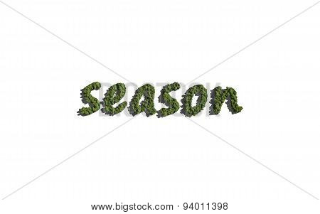 Season Text Tree With White Background
