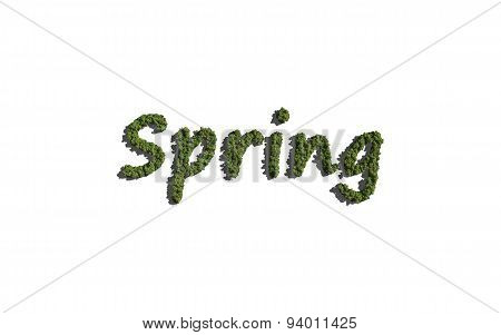 Spring Text Tree With White Background