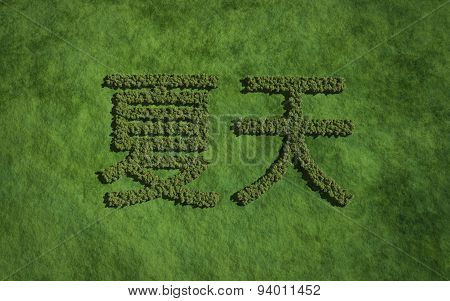 Summer Chinese Text Tree With Grass Background
