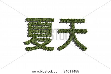 Summer Chinese Text Tree With White Background
