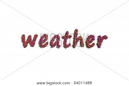 Weather Text Flower With White Background