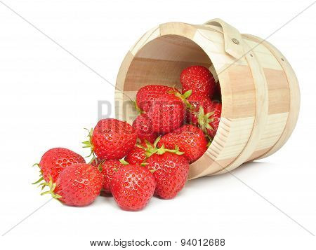 strawberries in a bucket