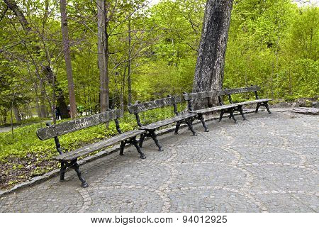 Wooden Bench In The Park Sophia. Uman, Ukraine