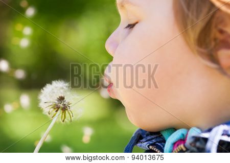 Blond Baby Girl Blows On A Dandelion Flower