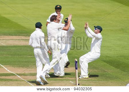 LONDON, ENGLAND - July 18 2013: Ryan Harris celebrates taking the wicket of Kevin Pietersen on day one of the Investec Ashes 2nd test match, at Lords Cricket Ground on July 18, 2013 in London, England