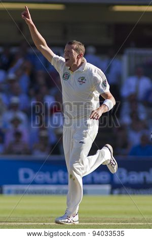 LONDON, ENGLAND - July 19 2013:  Peter Siddle celebrates taking the wicket of Alastair Cook during day two of the Investec Ashes 2nd test match, at Lords Cricket Ground on July 19, 2013