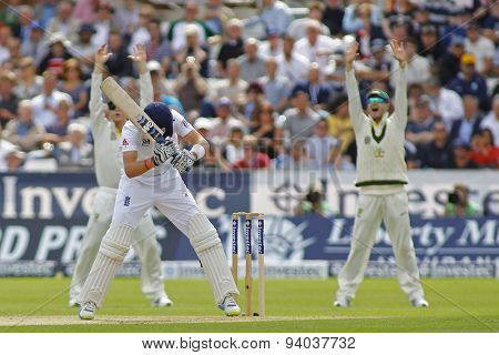 CHESTER LE STREET, ENGLAND - August 09 2013: Australia appeal for the wicket of Joe Root during day one of the Investec Ashes 4th test match at The Emirates Riverside Stadium, on August 09, 2013