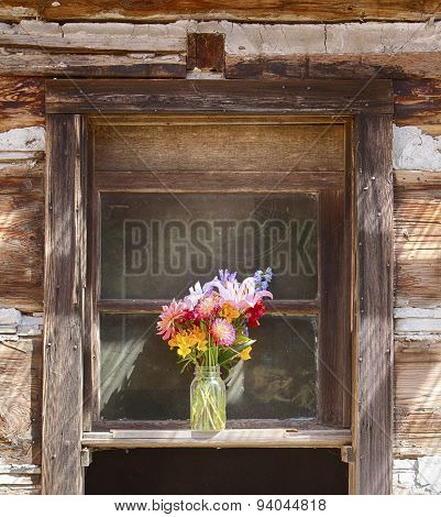 Flower Vase In Window