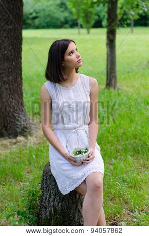 Elegant Young Lady Picking Flowers In The Forest On Beautiful Spring Day