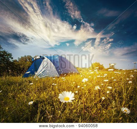 Tourist tent in forest camp among meadow