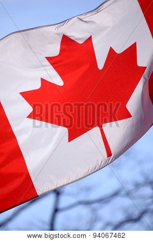 Canadian Flag Waving
