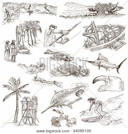 Hawaii - Full Sized Hand Drawn Illustrations On White