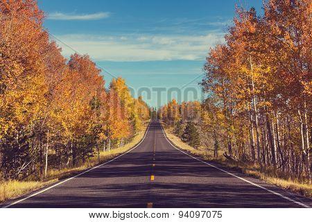 Autumn season in Sierra Nevada