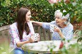 stock photo of granddaughters  - Teenage Granddaughter Relaxing With Grandmother In Garden - JPG