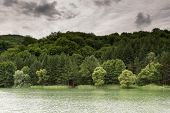 image of cloud forest  - Natural lake with forest in the background and stormy clouds on the sky - JPG