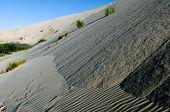 stock photo of quicksand  - Te Paki sand dunes in Northland New Zealand - JPG