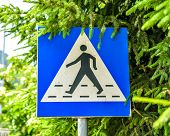 picture of pedestrian crossing  - Old weathered and violated pedestrian crossing sign in the street - JPG