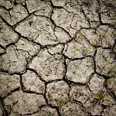 stock photo of drought  - Cracked earth from the intense heat - JPG