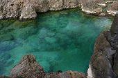 picture of volcanic  - Swimming natural pools of volcanic lava in Porto Moniz - JPG