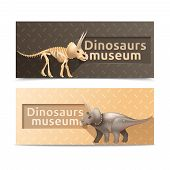 pic of dinosaur skeleton  - Horizontal triceratops dinosaurs museum banners and plates isolated vector illustration - JPG