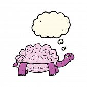 foto of tortoise  - cartoon tortoise with thought bubble - JPG
