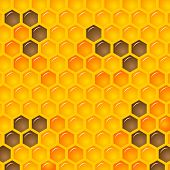 foto of honeycomb  - Vector Illustration of a Natural Background with Honeycombs - JPG