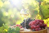 image of grape  - Wineglass and grape on wooden barrel on grape plantation background - JPG