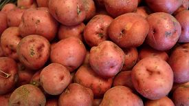 picture of solanum tuberosum  - Red new potato background in widescreen - JPG