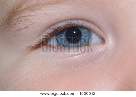 Thru A Child'S Eye