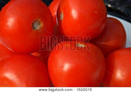 Tomatoes37