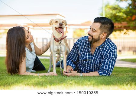 Dog Owners Relaxing At A Park
