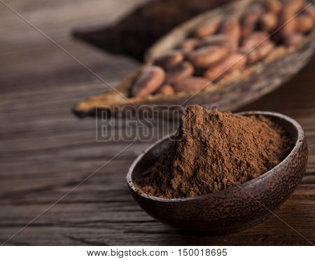 Cacao beans and powder and food dessert background
