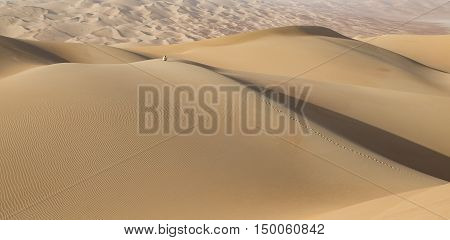 Man in traditional outfit in Empty Quarter Desert that covers a large area of UAE KSA and Oman