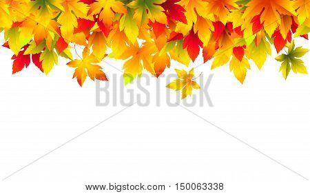Vector horizontal seamless autumn border. Background with green, yellow, orange, red and brown falling maple leaves. File contains clipping mask. Isolated from a background.
